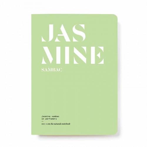 Cover Jasmine Sambac in Perfumery