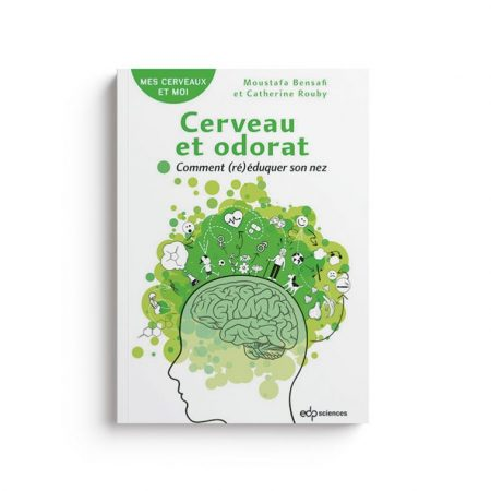 Cerveau et odorat